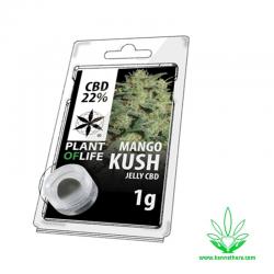 Jelly Mango Kush 22% CBD 1g